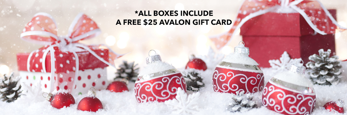 Holiday Care Kits and Gift Boxes