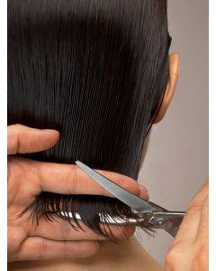 Women's Shampoo and Haircut