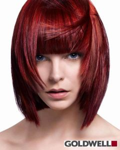 Goldwell Color Application